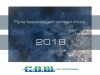 nieuwjaarskaart-2018-cow